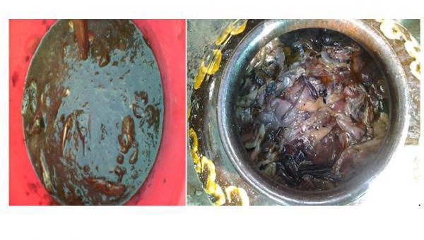 ငါး အမိုင်နို အက်ဆစ် ပြုလုပ်နည်း (Fish Amino Acid - FAA)