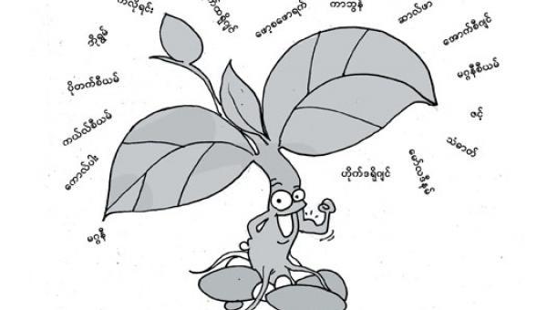 အပင်အတွက် မရှိမဖြစ်လိုအပ်သော အဟာရများ