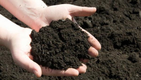 ကျန်းမာသော မြေဆီလွှာ အလေ့အကျင့်များ