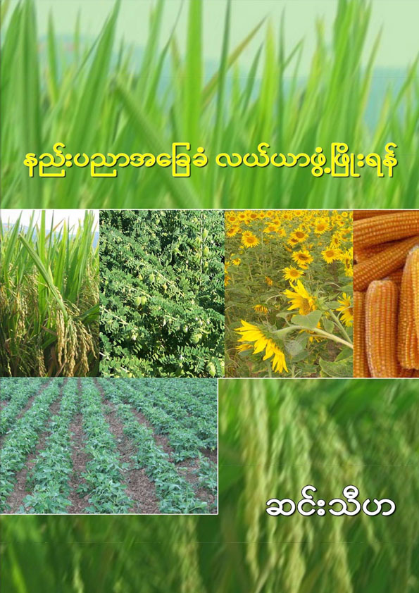 နည်းပညာ အခြေခံ လယ်ယာဖွံဖြိုးရန်