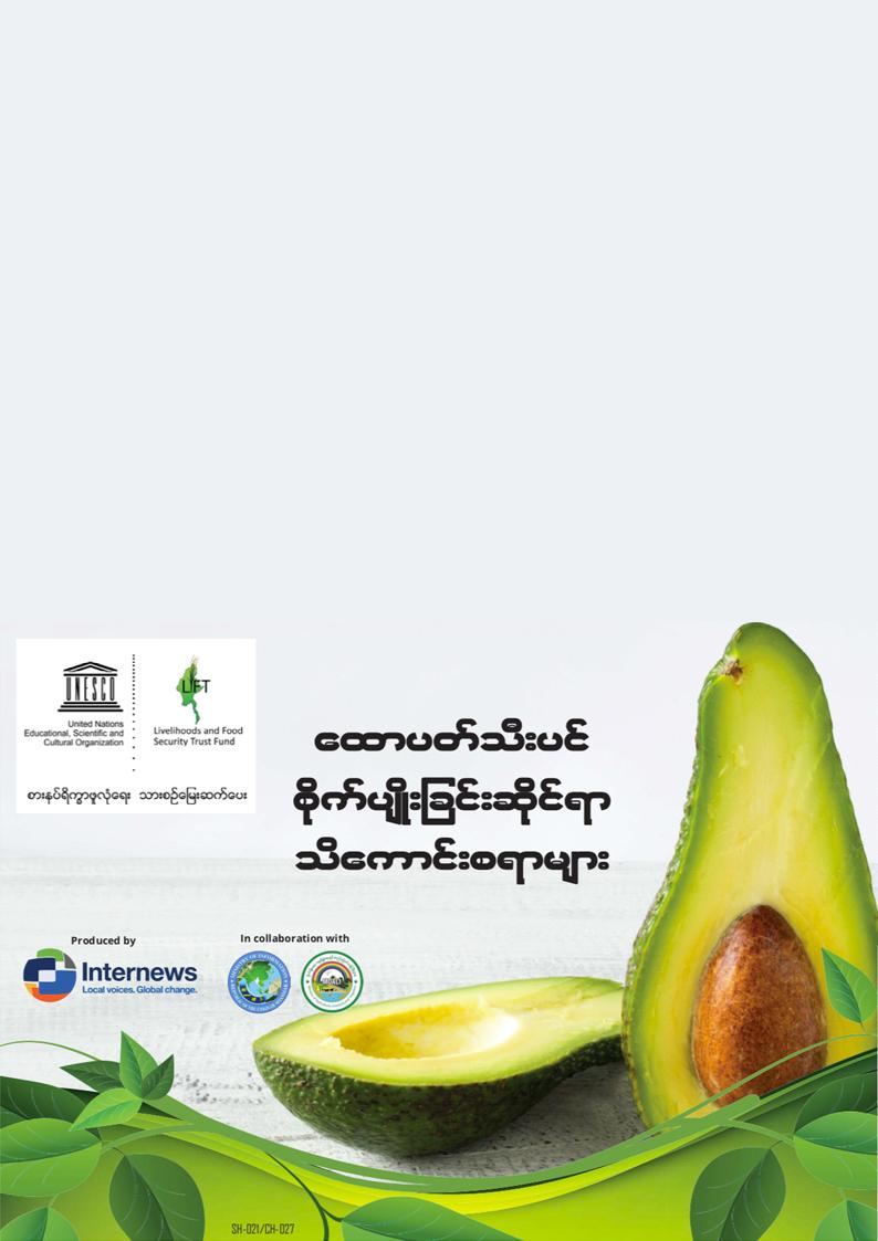 ထောပတ်သီးပင်စိုက်ပျိုးခြင်းဆိုင်ရာ သိကောင်းစရာများ