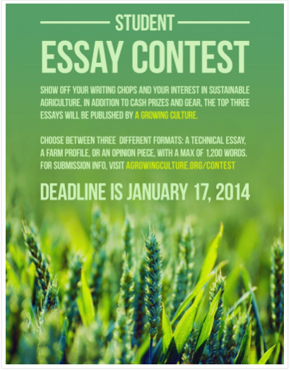student essay contest book