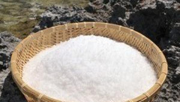 စိုက်ပျိုးရေးတွင် ပင်လယ်ရေနှင့် ဆားကြမ်း အသုံးဝင်ပုံ