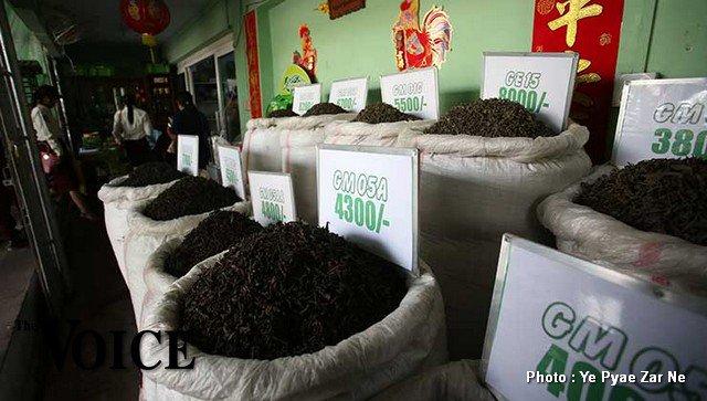 မြန်မာ့လက်ဖက်ခြောက်ဝယ်ယူရန် တရုတ်ကမ်းလှမ်း (The Voice)