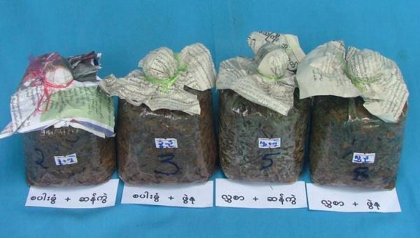 ထရိုင်ခိုဒါးမားမှိုကို သီးနှံ စိုက်ပျိုးရေးတွင် အသုံးပြုခြင်း