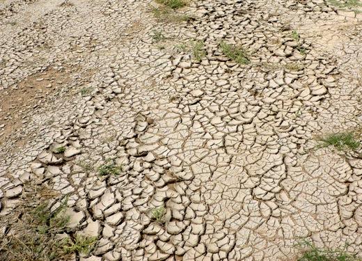 ဆပ်ပြာပေါက်မြေ မြေဆီလွှာ ပြုပြင်နည်း