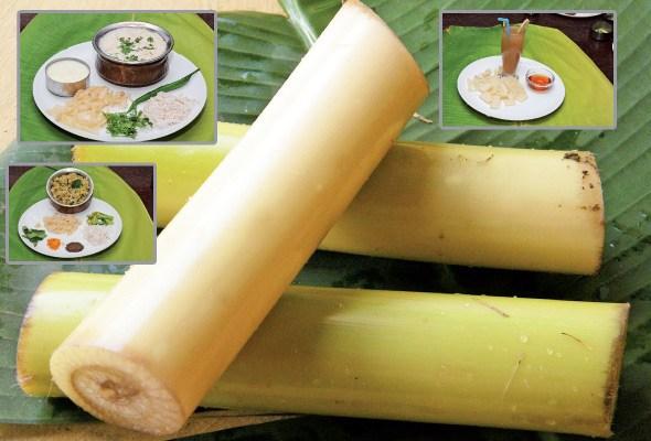ငှက်ပျောပင်စည်မှ ရရှိနိုင်မည့်ကျန်းမာရေး အကျိုးကျေးဇူးများ