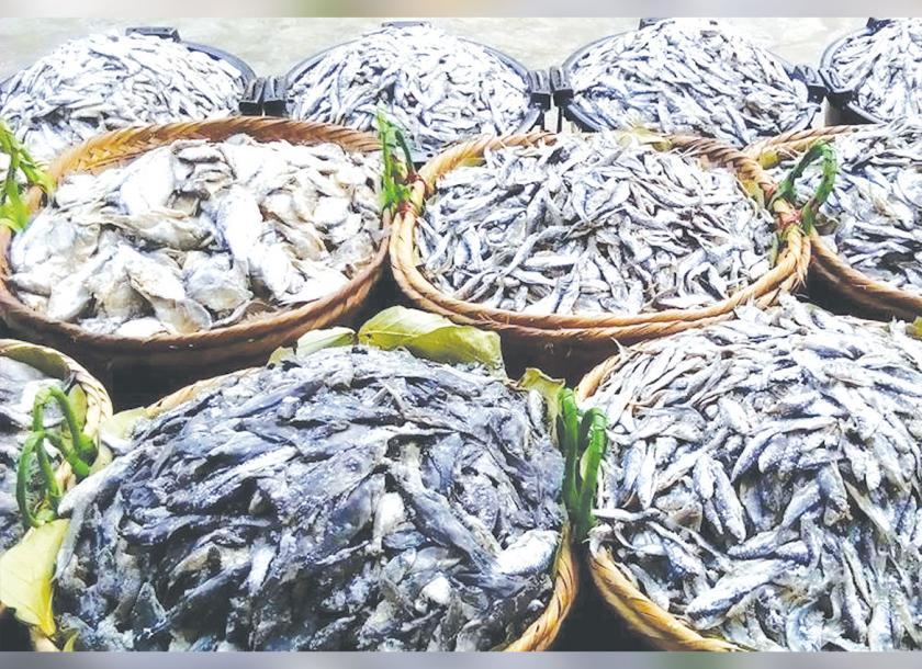 ကသာဒေသထွက်ငါးများ တင်ပို့ကုန်အဖြစ် စတင်ရောင်းဝယ်နေ