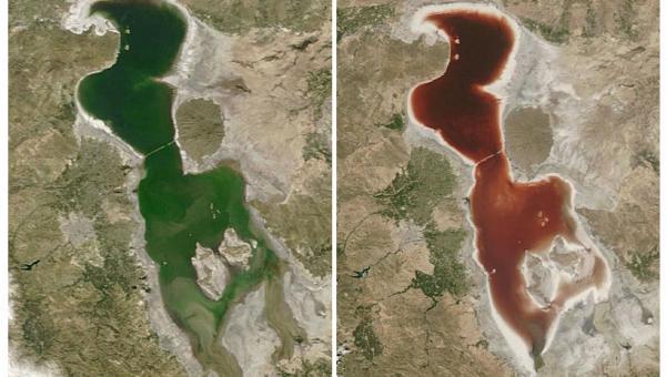 ဧရာမ အစိမ်းရောင်ရေကန်ကြီးက ဘာလို့ သွေးနီရောင် အဖြစ်သို့ ပြောင်းလဲသွားရတာလဲ?