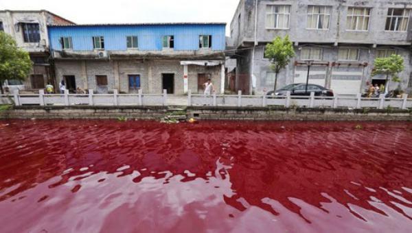 ရုတ်တရက် သွေးနီရောင် ပြောင်းသွားတဲ့ မြစ်တစင်း