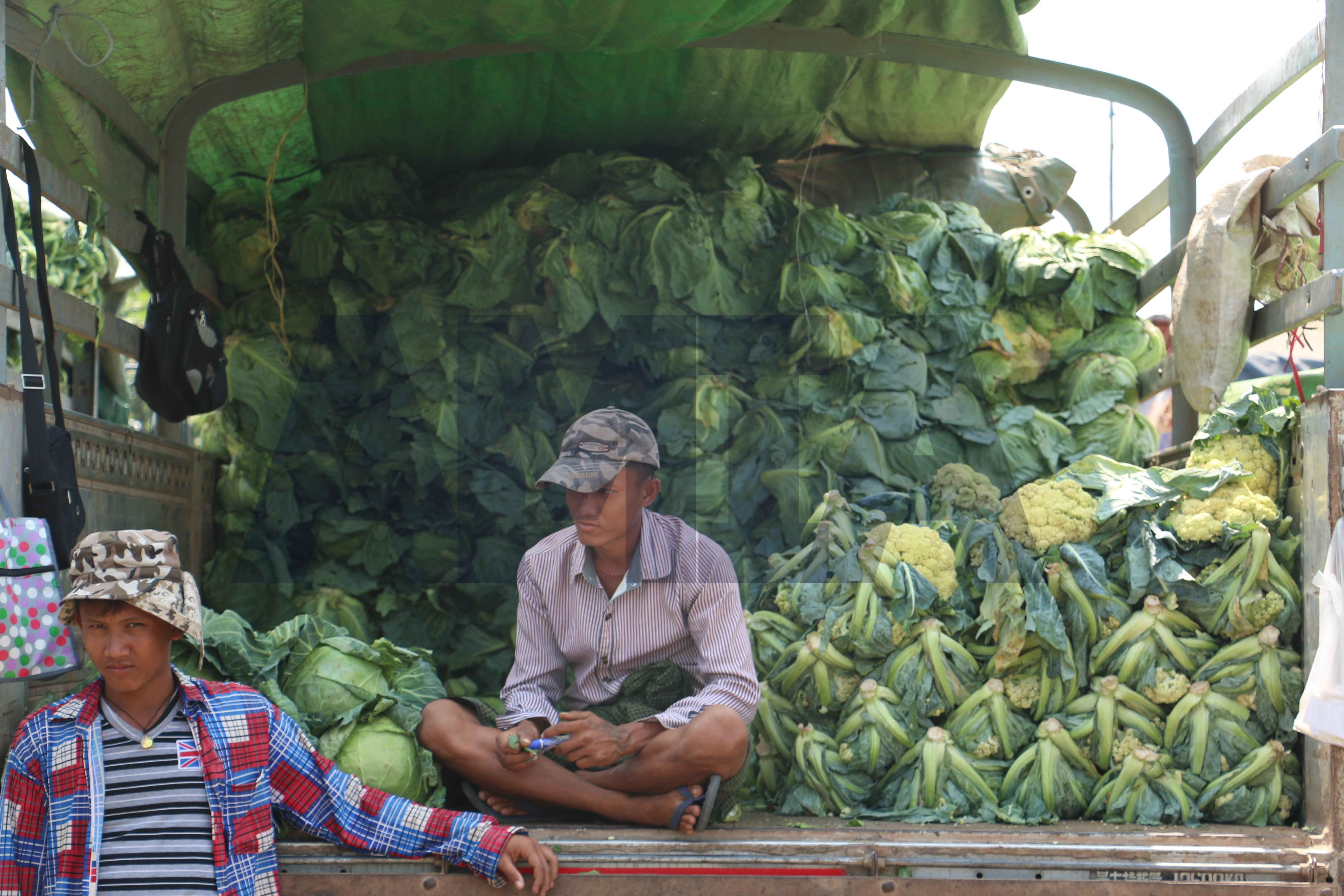 ယခုဘဏ္ဍာနှစ် အစတွင် လယ်ယာထွက်ကုန် တင်ပို့မှုမှ ပို့ကုန်ဝင်ငွေ တိုးတက်ရရှိနေ