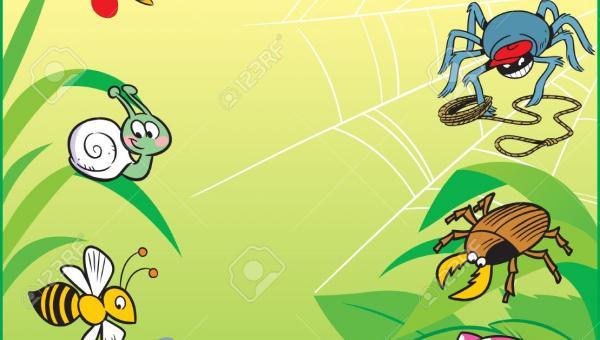 ဘက်စုံပိုးမွှား ရောဂါကာကွယ်နှိမ်နင်းရေး ဖြစ်စဉ်