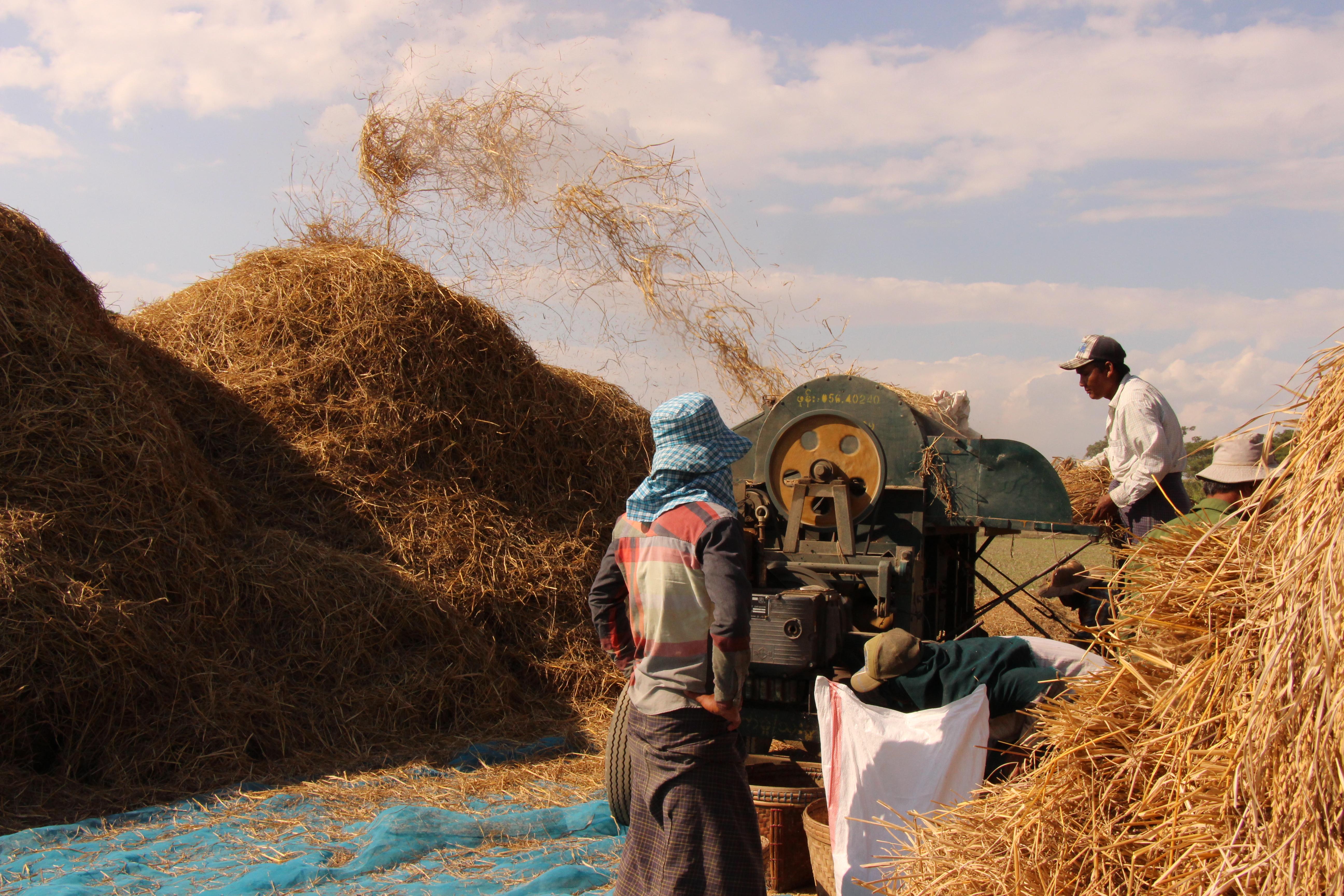 မွန်ပြည်နယ်ရှိ ဆန်စက်လုပ်ငန်းရှင်များ ချေးငွေရရှိရေးအတွက် အကူအညီ တောင်းခံနိုင်