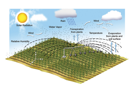 သီးနှံစိုက်ပျိုးထုတ်လုပ်မှုအပေါ် သက်ရောက်မှုရှိသော ပင်ငွေ့ပျံခြင်းနှင့် ပင်ရည်ပျံခြင်းဖြစ်စဉ်