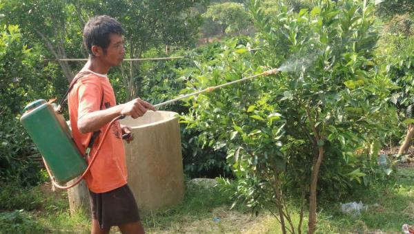 ကူညီဖေးမမှု လိုအပ်နေသည့် ရွာငံလိမ္မော်