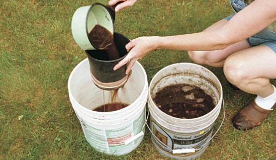 Compost Tea (မြေဆွေး လက်ဖက်ရည်)