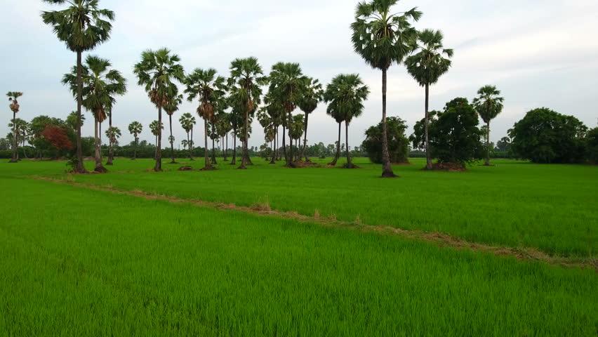 တောင်သူ လယ်သမားကြီးများအတွက် နှိုးဆော်ချက် (မေလ)