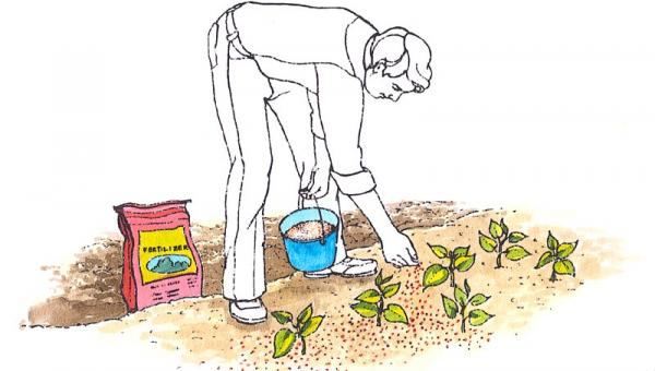စွန့်ပစ်ပစ္စည်းများက မြေဩဇာဖြစ်နိုင်ပါသလား