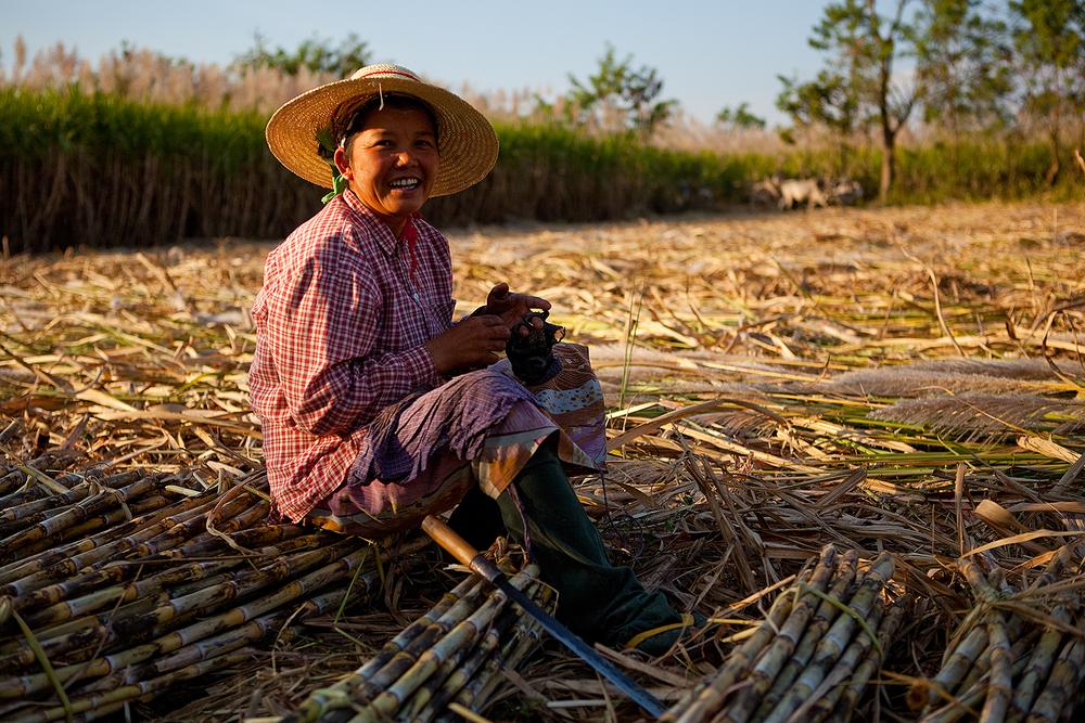 တောင်သူလယ်သမားကြီးများအတွက် နှိုးဆော်ချက် (ဧပြီလ)