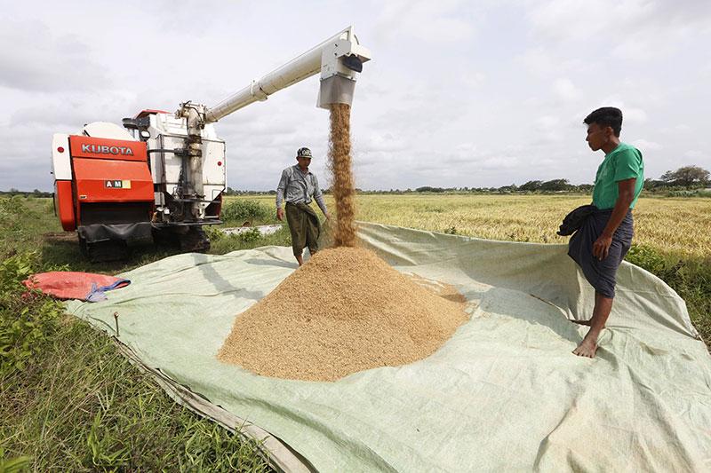မြန်မာ့လယ်ယာဖွံ့ဖြိုးရေးဘဏ်နှင့် KMM Kubota ကုမ္ပဏီတို့ပူးပေါင်းပြီး လယ်ယာသုံးစက်ကိရိယာများ အရစ်ကျ ရောင်းချပေးမည်ဟုသိရ
