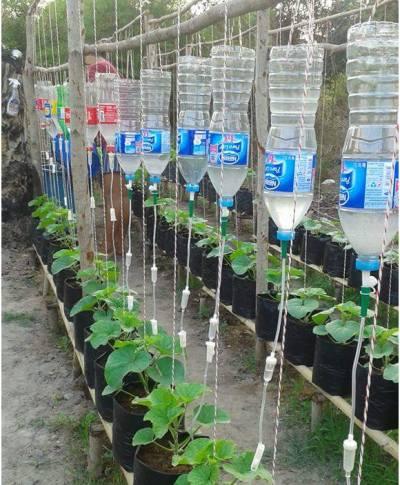 Plastic bottle (ရေဘူး) အသုံးပြု ရေအစက်ချစနစ် ပြုလုပ်ခြင်း အပိုင်း (၃)