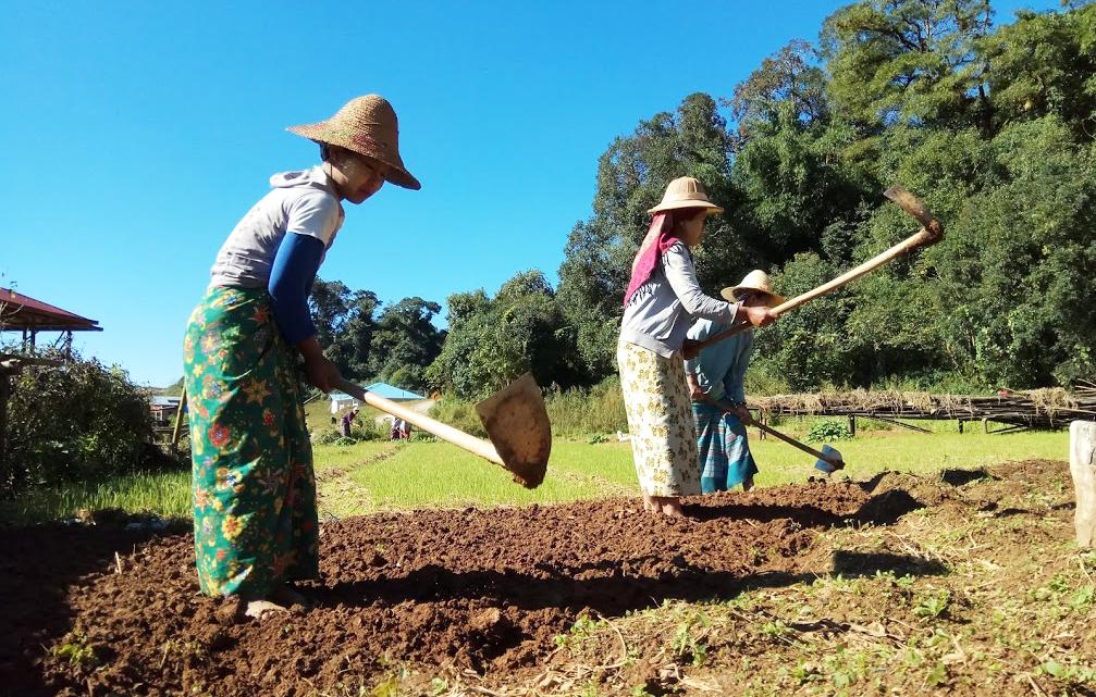 တောင်သူတို့ကို အကျိုးမပြုနိုင်သေးသော မြေအသုံးချရေးဆိုင်ရာဥပဒေ