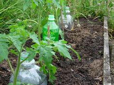 Plastic bottle (ရေဘူး) အသုံးပြု ရေအစက်ချစနစ် ပြုလုပ်ခြင်း အပိုင်း (၂)